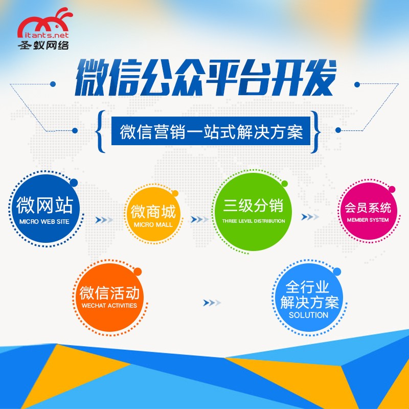 微商城托管推广 品牌视觉广告设计 东莞市圣蚁网络有限公司