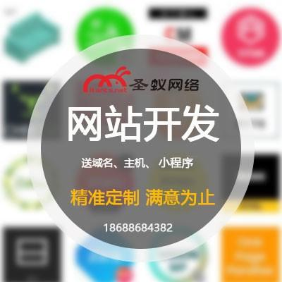 东莞网站开发定制 东莞微商城建设 东莞市圣蚁网络有限公司