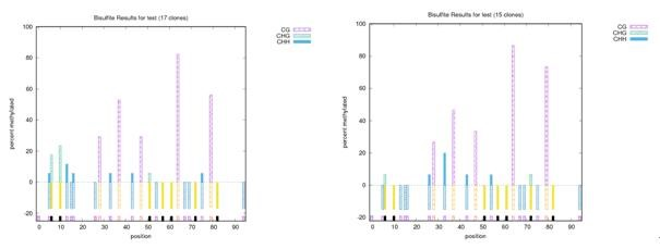 贵阳dna甲基化检测实验重磅优惠来袭 亚细胞定位 其他未分类贵阳染色质免疫共沉淀