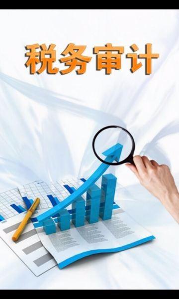 正规审计税审报告官网服务商 优质专业的公司变更业务企业专业定制