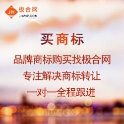 买服装商标流程 注册版权登记网 广东联肯知识产权运营有限公司