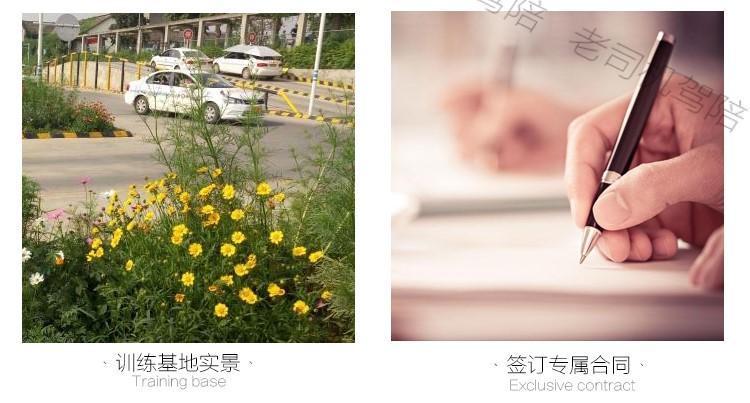 驾照学车_成都驾校学车价格_成都老司机汽车服务有限公司
