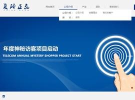 做网站较好的公司-网站制作公司-上海谷谷网络科技有限公司