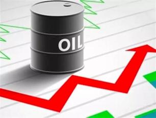 现货原油 贵金属交易所招商中心 金殿环球金融投资有限公司
