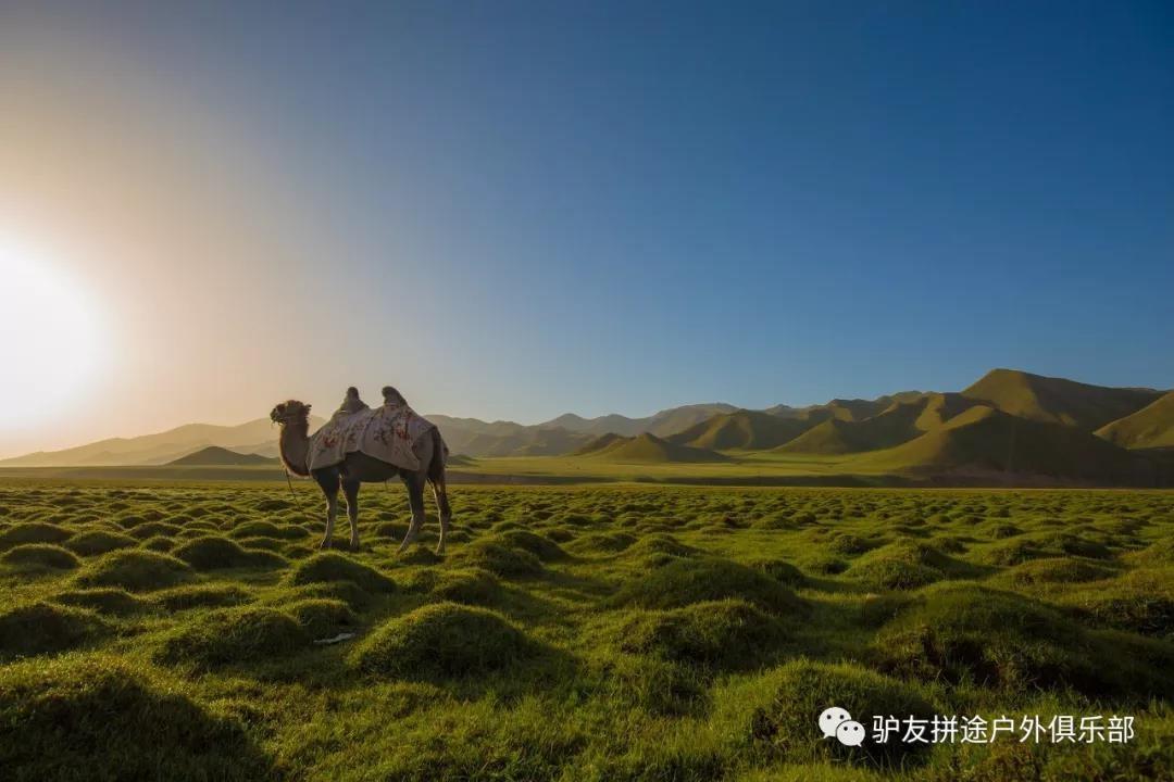 天鹅湖草原九曲十八弯_旅游服务有哪些