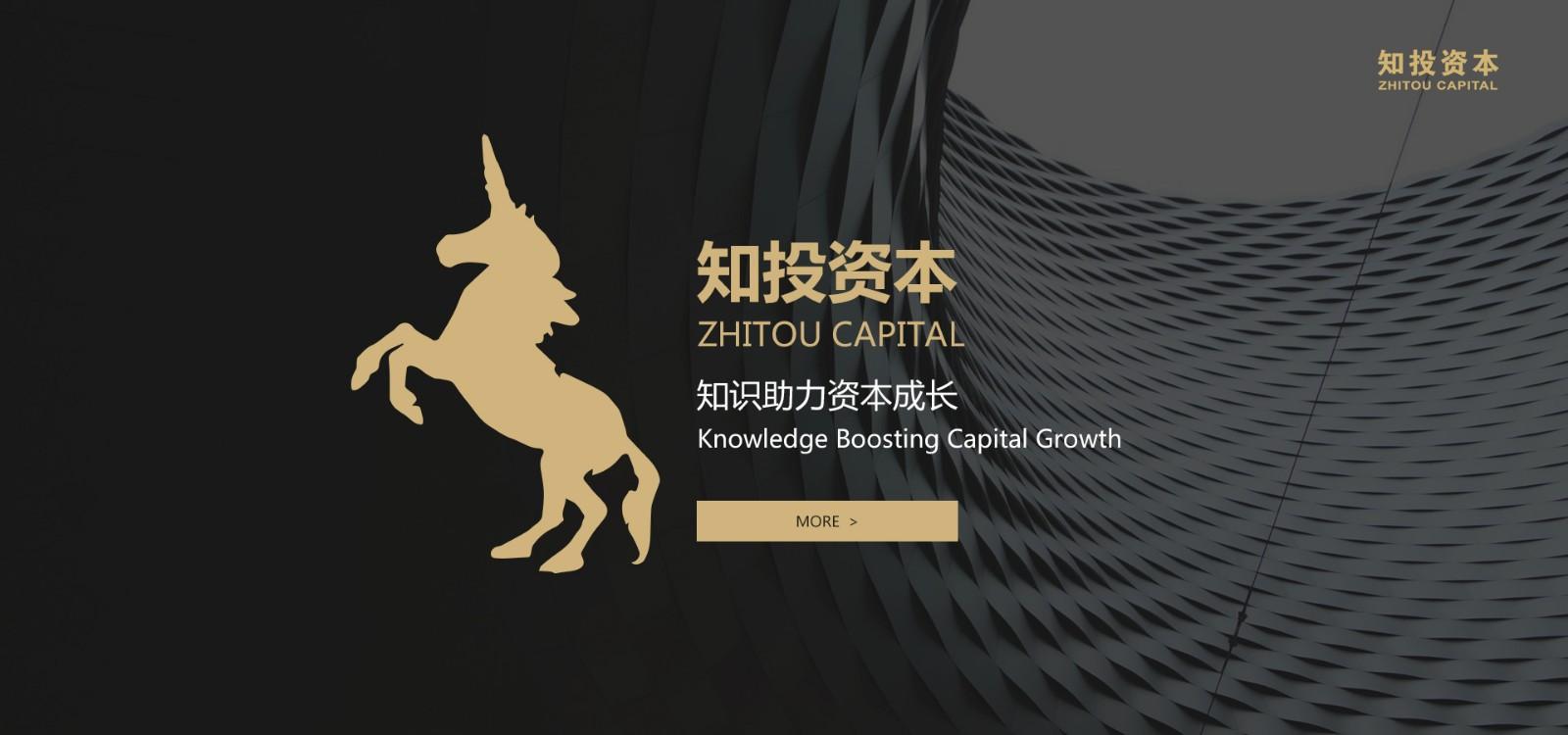 创业投资基金/企业融资方法/知投网