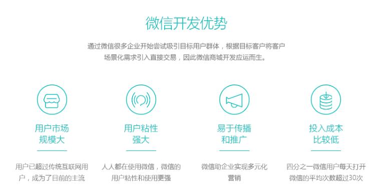 远程医疗型网站开发_95供求网