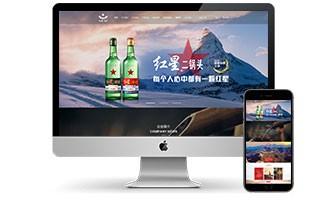 北京网站开发多少钱_95供求网