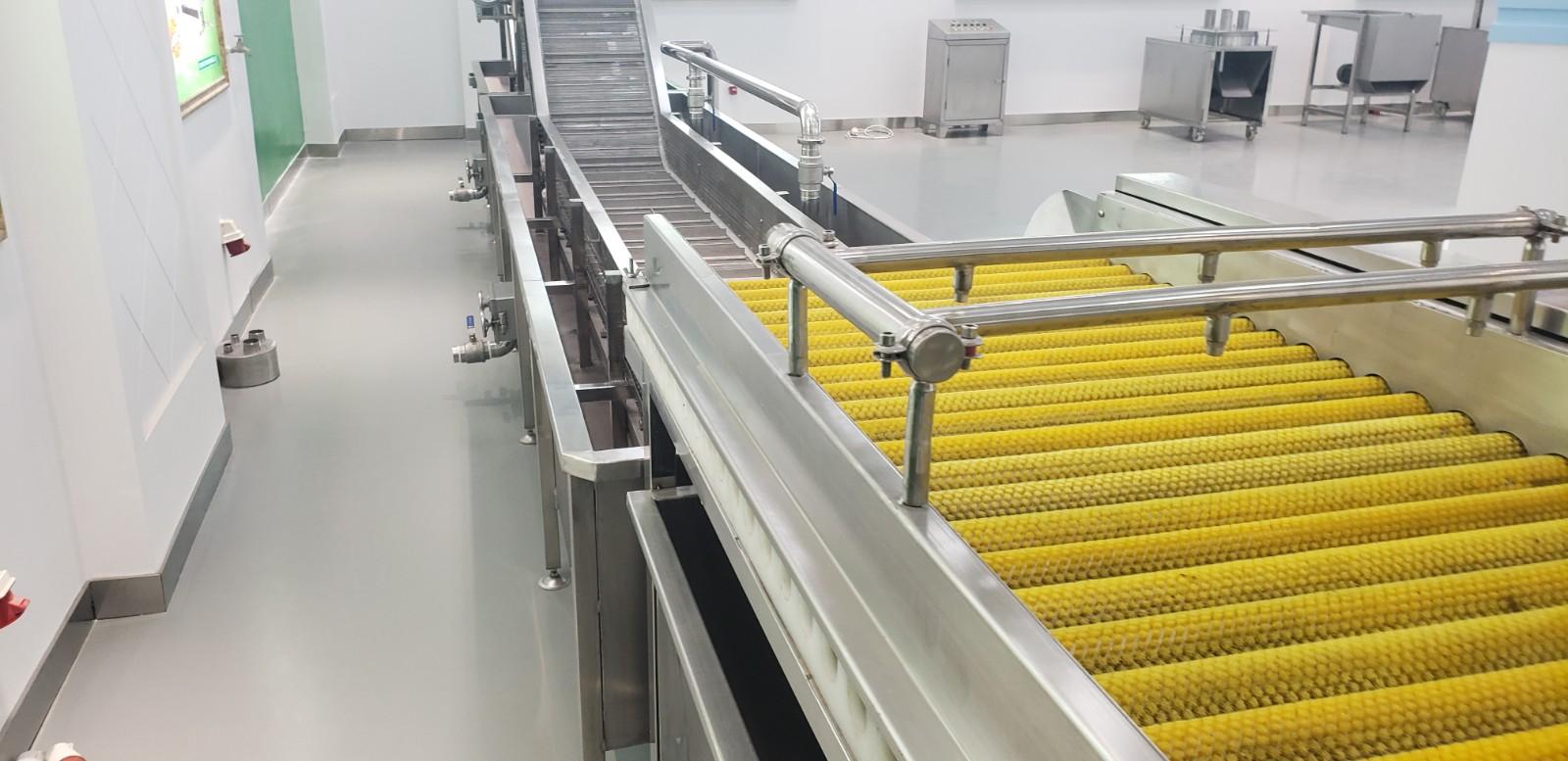 高品质专业净菜加工生产厂家_冷冻食品加工设备相关