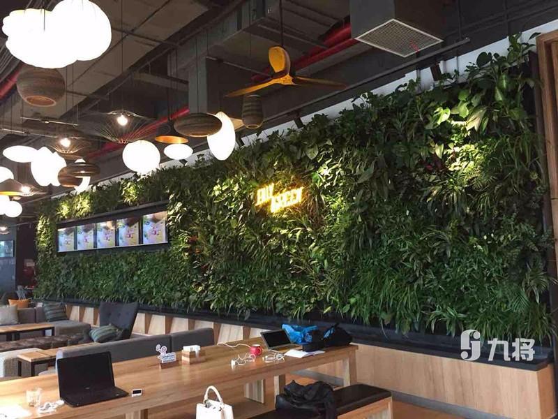 优质生态墙施工 上海绿植墙价钱 上海九将农业科技无限公司