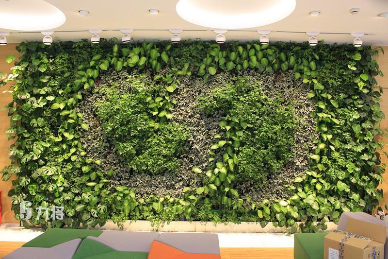 上海墙体绿化设计-室表里生态墙厂家-上海九将农业科技无限公司