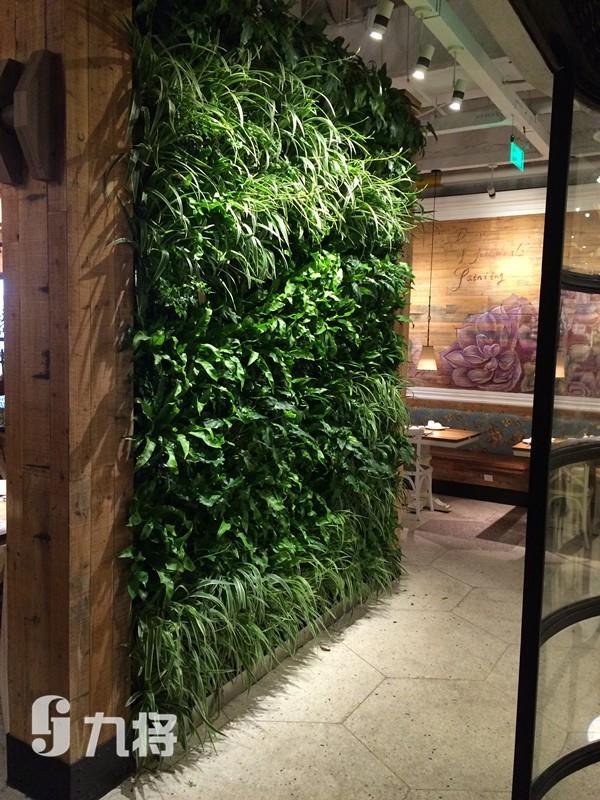 绿植墙施工 植物生态墙厂家 上海九将农业科技有限公司
