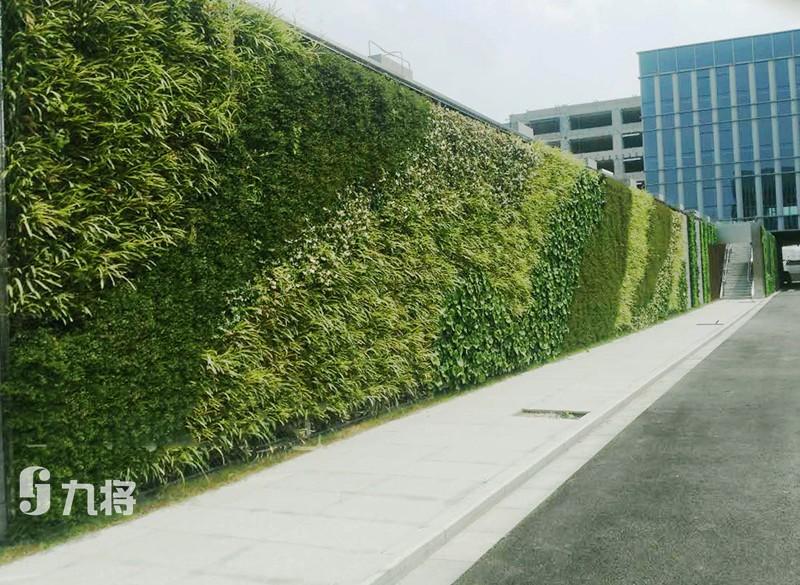城市立体绿化/专业墙体绿化价格/上海九将农业科技有限公司