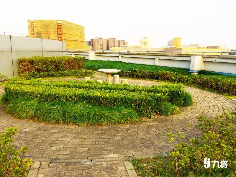 专业屋顶绿化-优质仿真动物墙-上海九将农业科技无限公司