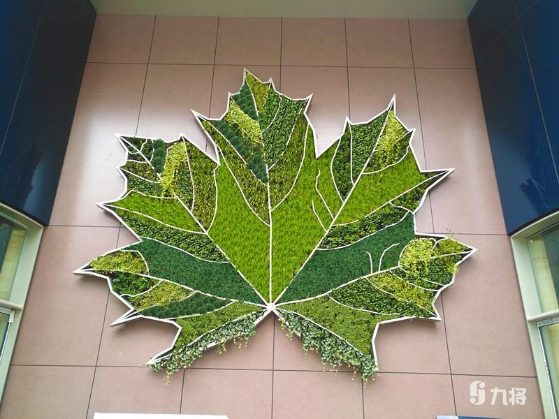 植物生态墙设计_叁叁企业网