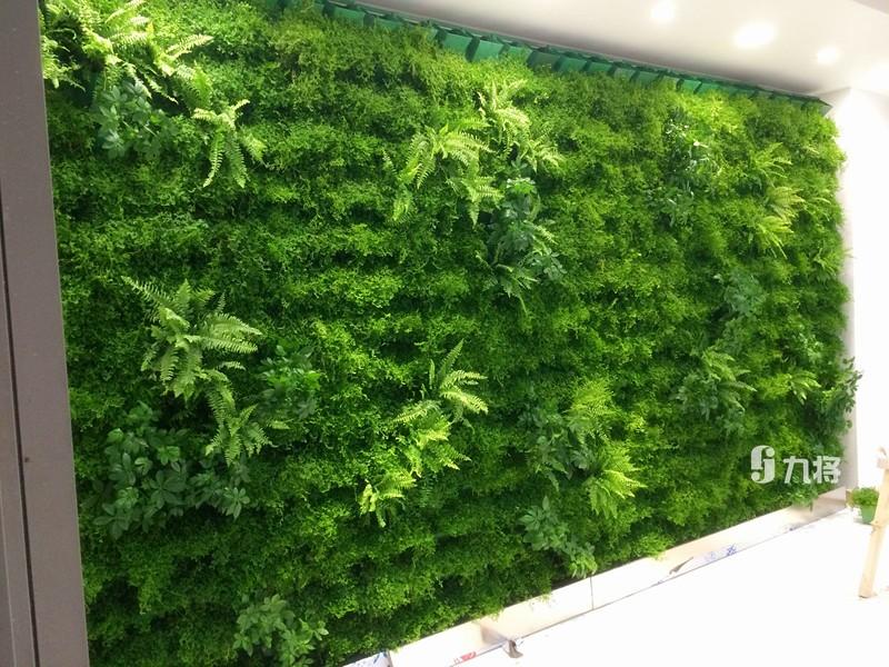 专业植物墙施工_叁叁企业网