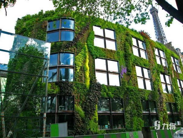 立体绿化墙哪家好_上海屋顶绿化价格_上海九将农业科技有限公司