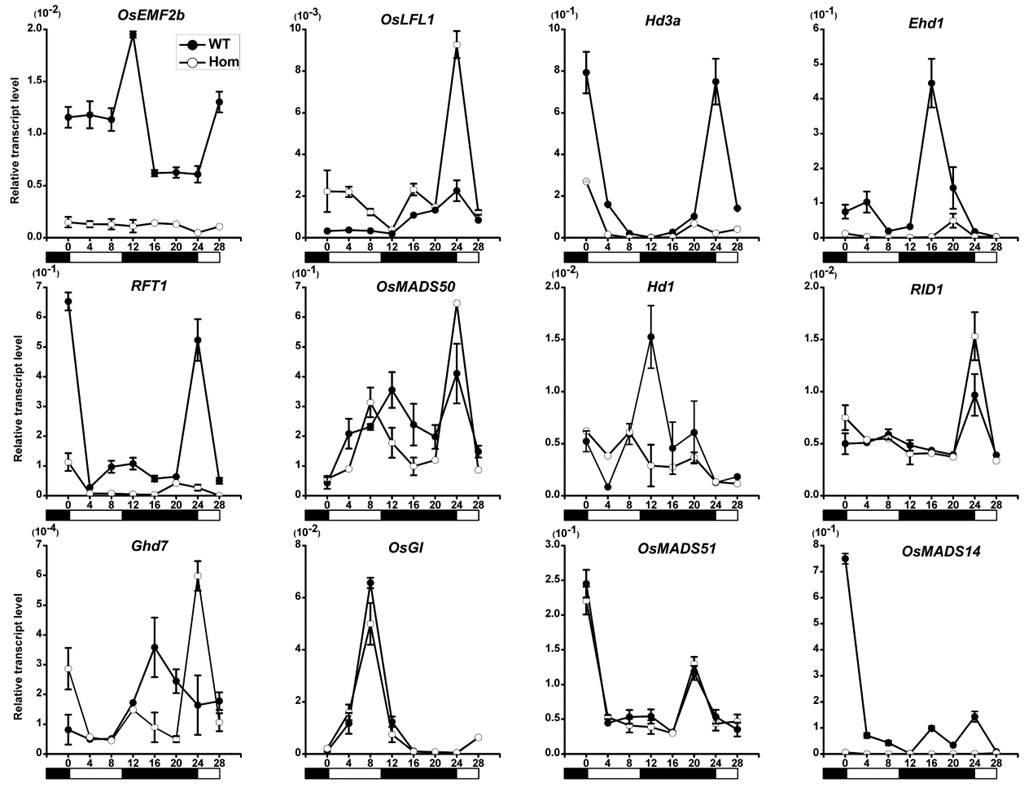 南昌荧光定量PCR技术服务_废塑料网