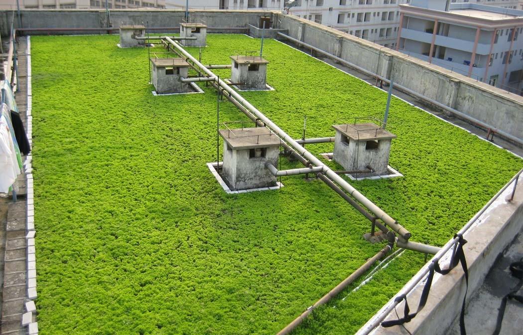 医院专用岩棉吸音吊顶公司网址_隔音、吸声材料制造厂家-上海绿屋节能建材有限公司